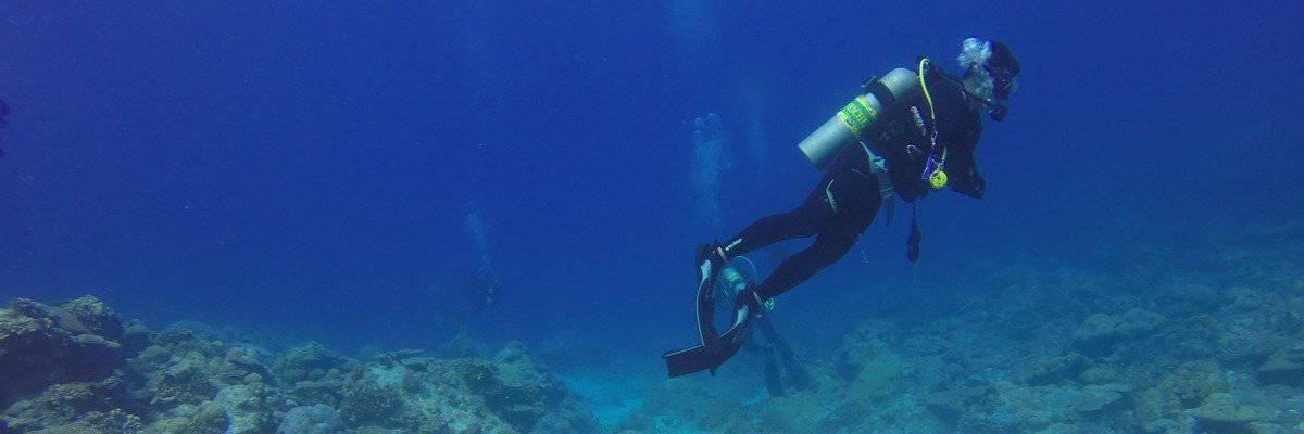 duikkeuring